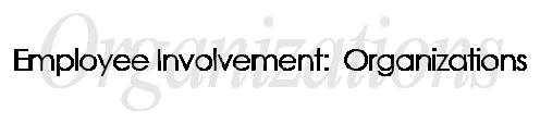 Employees Involvement-Organizations-01